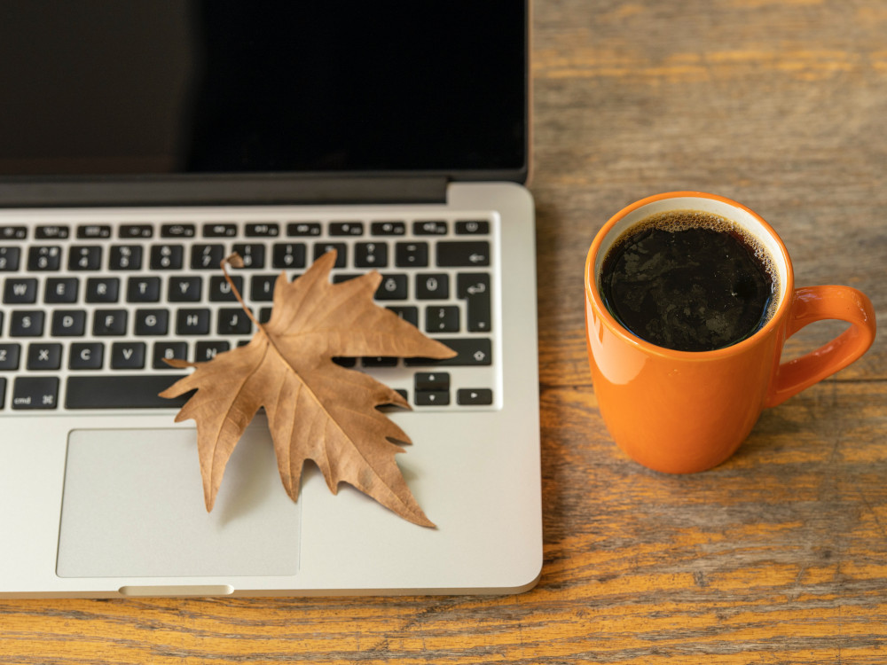 A leaf sits on the keyboard of an open laptop beside a mug of coffee